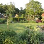 tuin in het voorjaar